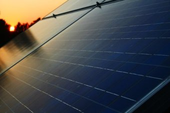 Rapid uptake of solar panels puts dent in electricity market.